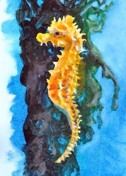 Ollie The Octopus - Illustration 6